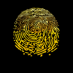 FingerPrint FGP
