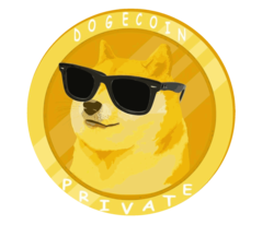 DogeCoin Private DOGP